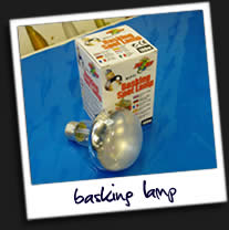 Basking-Lamp